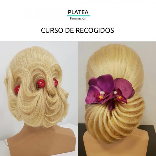 CURSO DE RECOGIDOS